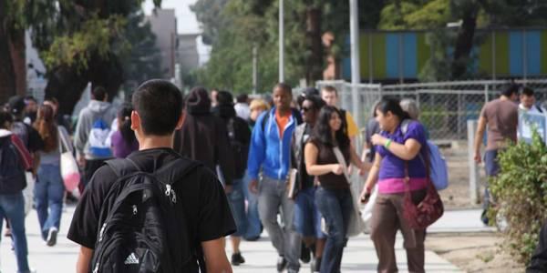 Youth Looking Ahead